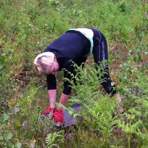 träning skogen